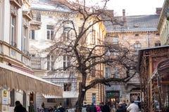 Lviv unique architecture Royalty Free Stock Photos