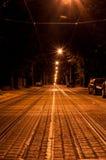 Lvov夜街道视图 库存图片