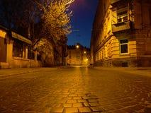 lvov Zdjęcie Stock