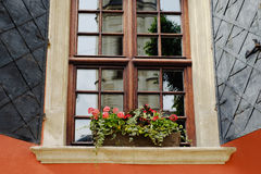 Lvov city architecture reflected in window Royalty Free Stock Images