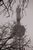 Lvov tv tower Stock Photo
