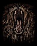 Lwów poryki, portret w nafcianym colour obraz royalty free