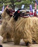 Lwów tancerze Zdjęcie Stock