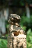 lwa kamień Fotografia Stock
