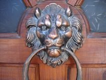 Lwa kierowniczy drzwi Obraz Stock