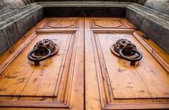 Lwa Knocker Kierowniczy Drzwiowy Zdjęcia Stock