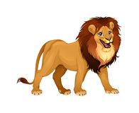 Lwa królewiątko Zdjęcia Royalty Free