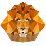 Lwa niskiego poli- projekta geometryczny zwierzęcy ilustracyjny wektor Fotografia Royalty Free