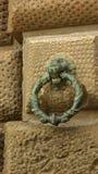 Lwa pierścionek Zdjęcie Royalty Free