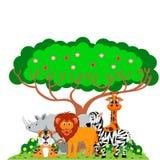 Löwe, Tiger, Zebra, Nashorn und Giraffe spielten unter einem Baum Stockbild