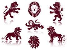 Löweabbildungen Stockfoto