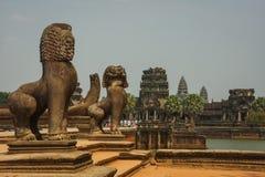 Löwen, die den Eingang zu den Ruinen von Angkor Wat Tempel schützen Lizenzfreies Stockfoto