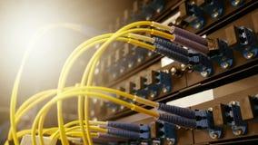 LWL - Kabel und Wegplatte im Gestell Lizenzfreies Stockfoto