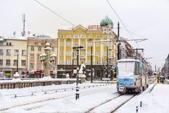 Lwy Przerzucają most w Sofia, Bułgaria w zimie Zdjęcia Royalty Free