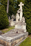 Lychakiv Cemetery in Lviv, Ukraine.  Tombstone Stock Image