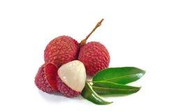 Lychee Świezi lychees odizolowywający na białym tle Zdjęcie Royalty Free