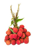 lychee καρπών δεσμών Στοκ Εικόνες
