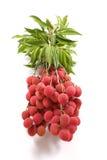 lychee пачки Стоковые Фотографии RF