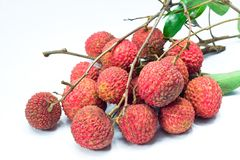Lychee. Fresh lychee fruits on white background Stock Image