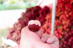 Lychee azjata owoc zdjęcie stock