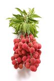 Lychee bundle Royalty Free Stock Photos