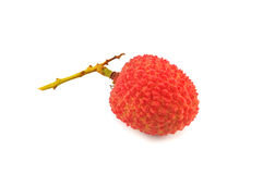 Lychee Stock Image