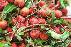 Lychee fruit. A bunch of freshly picked lychee fruit (shallow depth of field Royalty Free Stock Photo