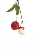 Lychee fruit. The lychee is a freshness fruit from tropical Stock Photography