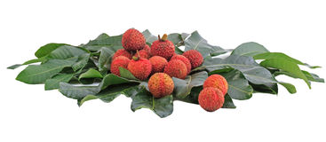 Lychee fruit Royalty Free Stock Images