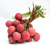 Lychee. The lychee fruit with white back ground Stock Image