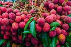Lychee fruits Royalty Free Stock Photo