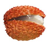 Lychee isolated on white royalty free stock photo