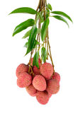 Lychee or Litchi isolated on the white background Royalty Free Stock Photos
