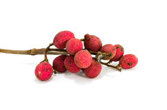 Lychee nuts Royalty Free Stock Photos