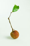 lychee with green leaf Royalty Free Stock Photography