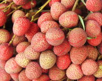 Lychee,Thai fruit Stock Image