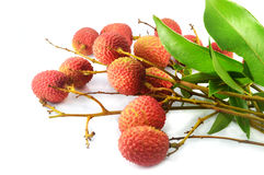 Lychee. Thai lychee fruit with white back ground Stock Image