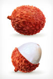 Lychee, vector icon Royalty Free Stock Photography