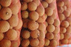 Lycheefruit Royalty-vrije Stock Afbeelding