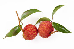 Lychees. Fresh lychees on white background Royalty Free Stock Photo