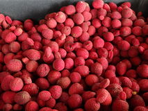 Lychees  Fruit Stock Image