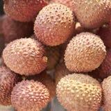 Lychees owoc Fotografia Stock