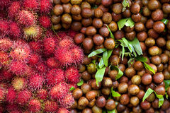 Lychees and rambutans Royalty Free Stock Photo