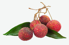 Lychees Thai fruit . Royalty Free Stock Images