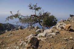 Lycian足迹在土耳其,这复仇的路在峭壁面孔附近通过, 免版税库存照片