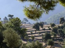 Lycian足迹在土耳其,这复仇的路沿位于山的领域通过,领域是露台的, 免版税库存图片