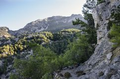 Lycian足迹在土耳其,这复仇的路沿高峭壁,在峡谷的看法跑长满与森林 免版税库存照片