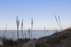 Lycian足迹,土耳其, Kabak海湾,岸没有由早晨太阳照亮, 库存照片