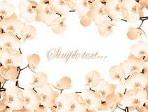 lyckönsknings- ramtappning Royaltyfria Bilder