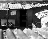 Lycka av de fattiga barnen arkivbild